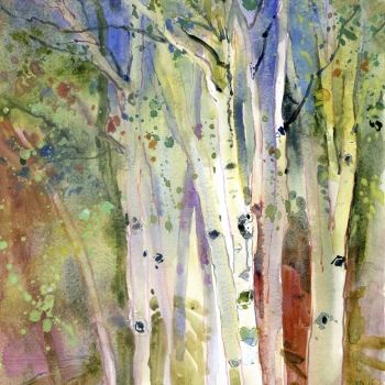 Birches_edited-1